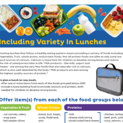 Variety and Tips for Lunches